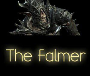 The Falmer