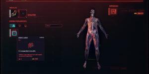 Cyberpunk 2077 Cyberware Guide Skeleton