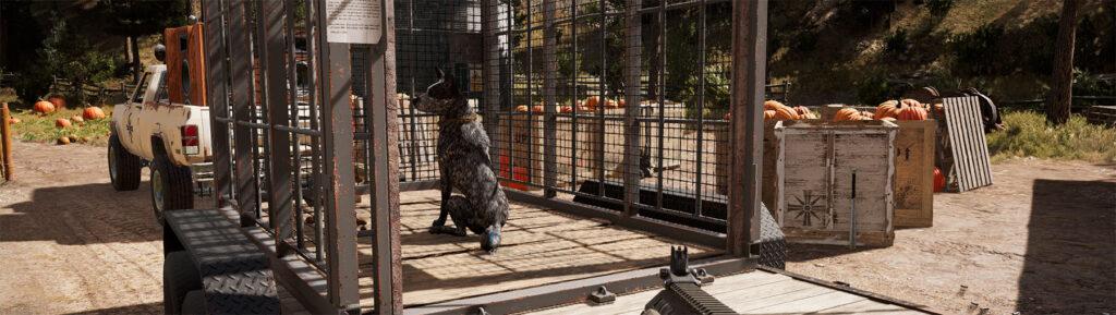 Guns For Hire Companions In Far Cry 5