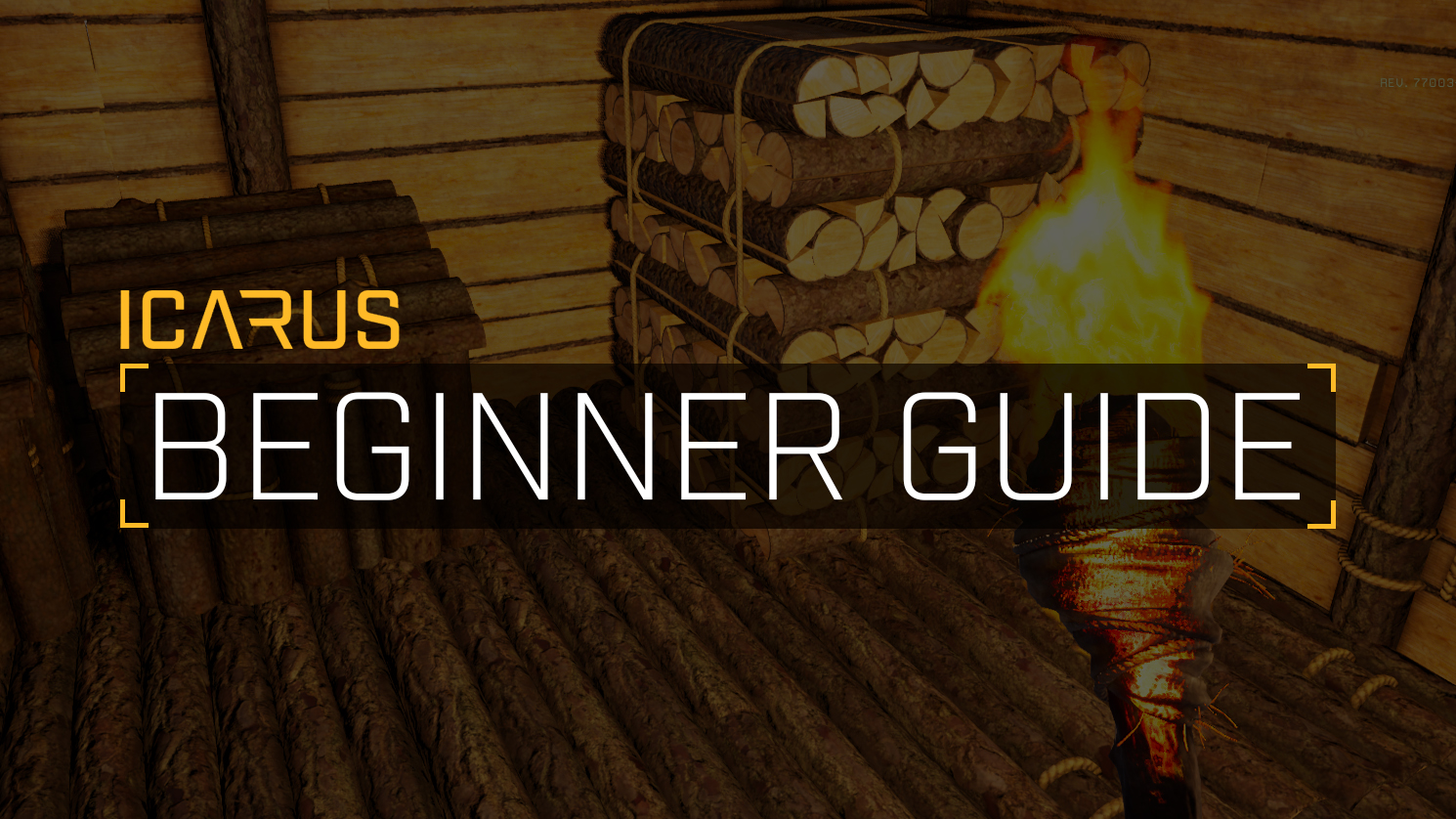 beginner's guide to icarus