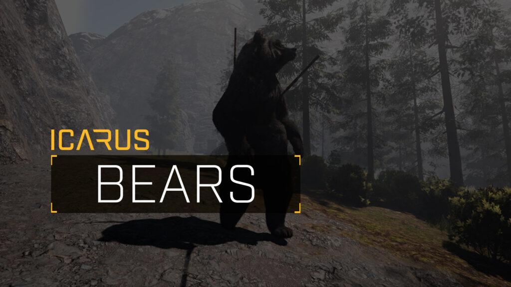 Surviving Bears in ICARUS
